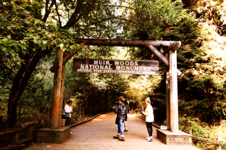 Entrance,Muir Woods,California